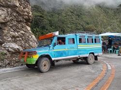 tour bus 250