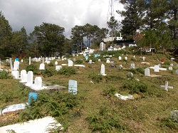 grave 250