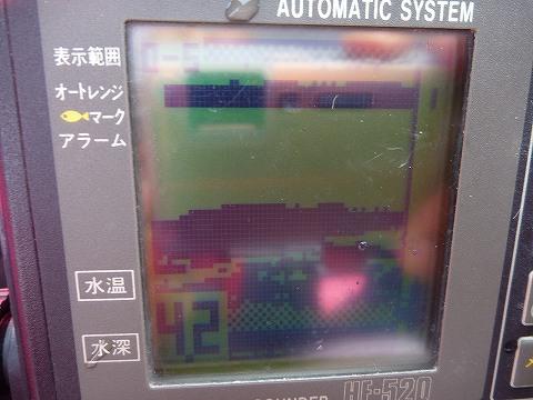 P1030103.jpg