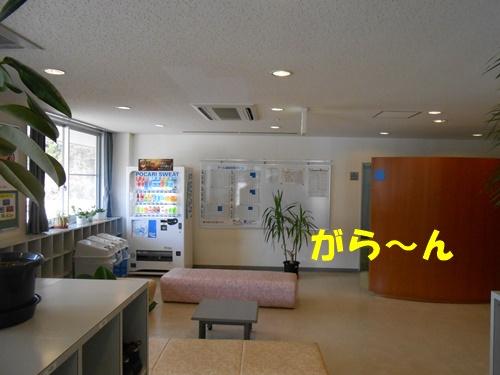 DSCN5487.jpg