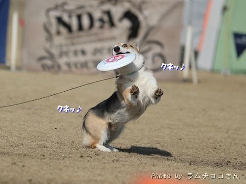 150221suzuka07.jpg