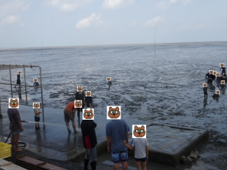 道の駅鹿島干潟体験