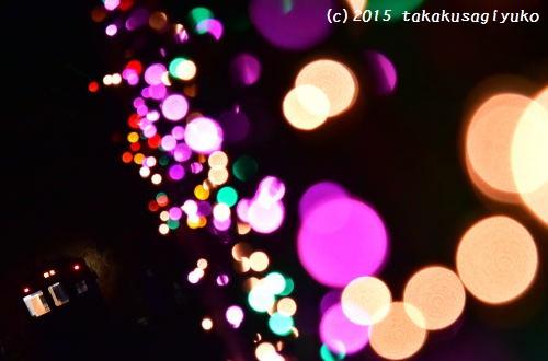 DSC_6433_01.jpg