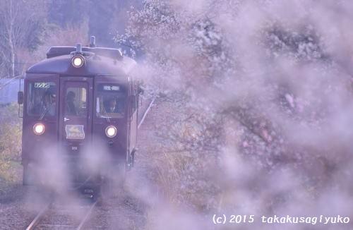 DSC_9068_01.jpg