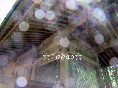 2015_0625_111402-IMG_2361のコピー