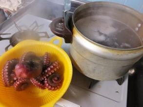 塩で良くもんでぬめりをとって塩茹で♪天然小豆紫いい色に茹であがりました♪国産地タコ~♪2015.01.10