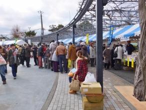 伊東温泉めちゃくちゃ市~立ち並ぶ美味しいもの物産店\(^o^)/2015.01.24
