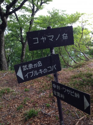 s_IMG_4573.jpg