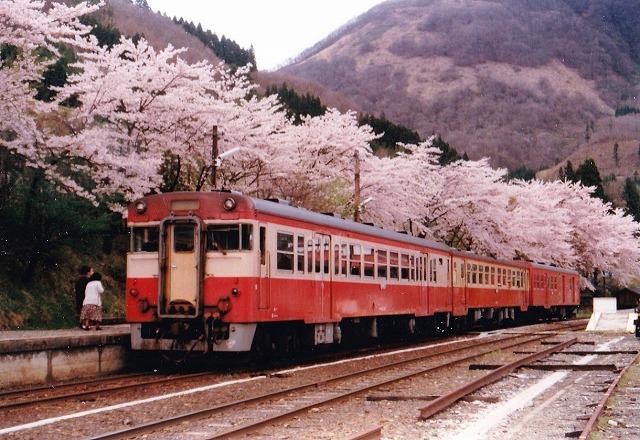 ⑫S540429桜と列車