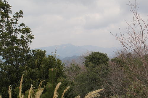 15_1_5_kamakura (62)(1)