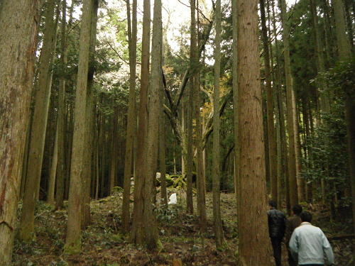 15_4_7_kasuga (18)(1)