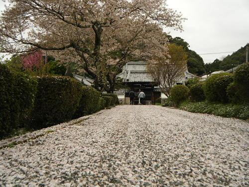 15_4_7_kasuga (46)(1)