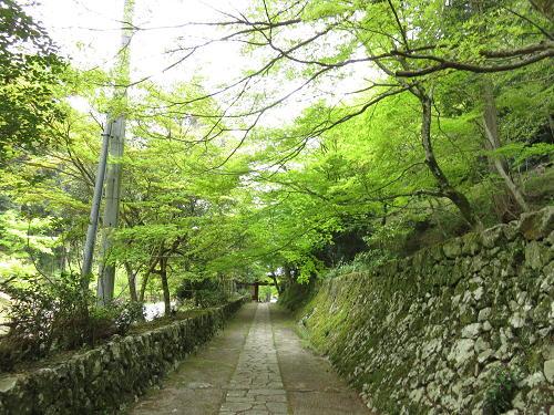15_4_24_takamijo (55)(1)