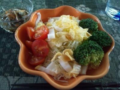 オレンジ白菜 (400x300)