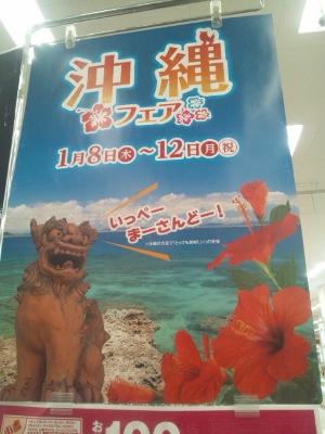 イオン沖縄フェア① (300x400)
