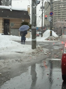 1月27日雨② (225x300)