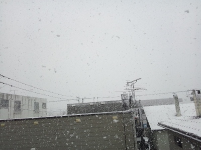 3月13日の札幌② (400x300)