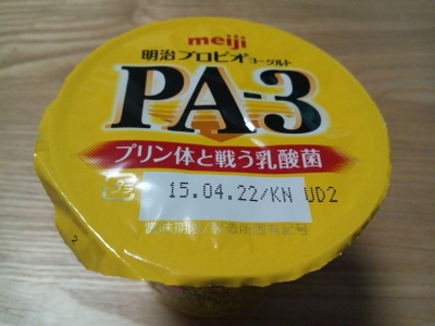 PA- 3 ① (400x300)