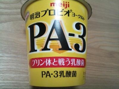 PA-3 ② (400x300)