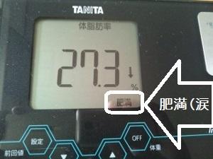 150506_体脂肪率 1 (300x225)