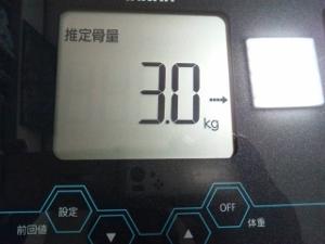 150506_推定骨量 2 (300x225)
