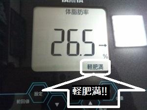 150506_体脂肪率 2 (300x225)