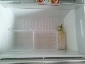 野菜室1 (300x225)