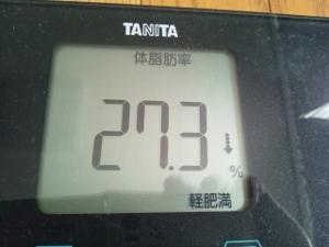 150616_体脂肪率 (300x225)