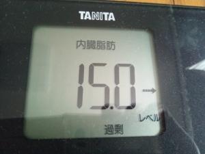 150616_内臓脂肪 (300x225)