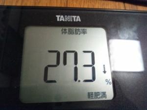 150620_体脂肪 (300x225)