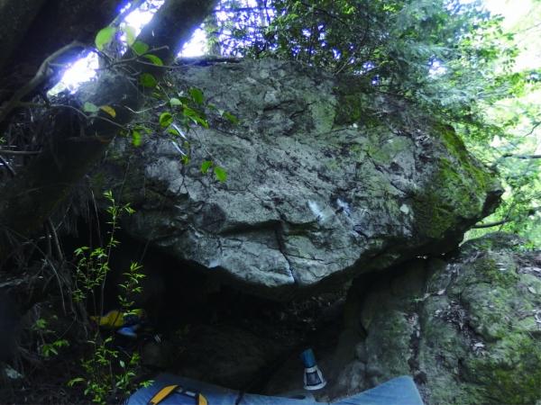 プロジェクトの岩