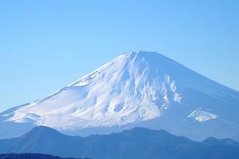 IMGP4675-1.jpg
