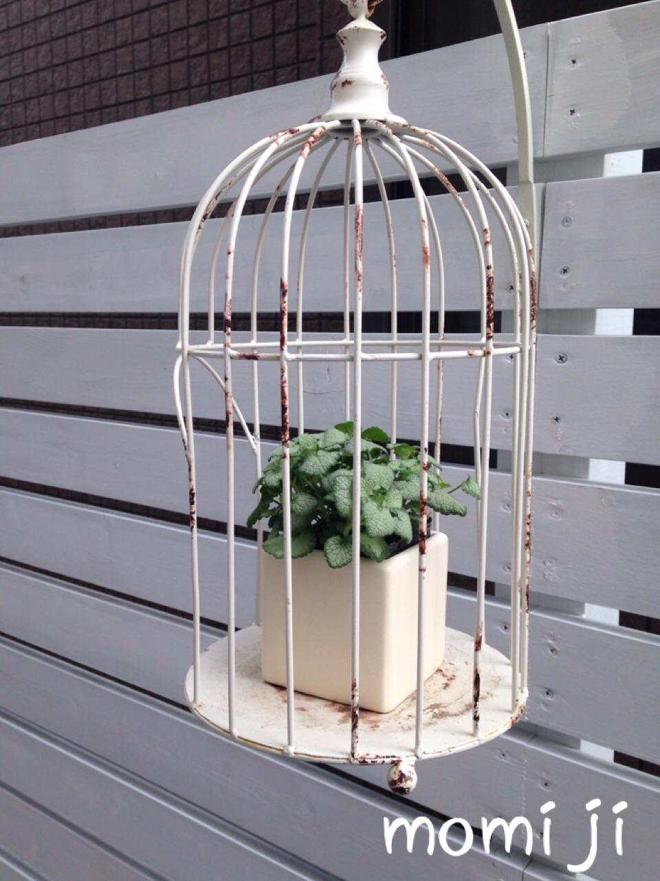 フェンスに鳥かご