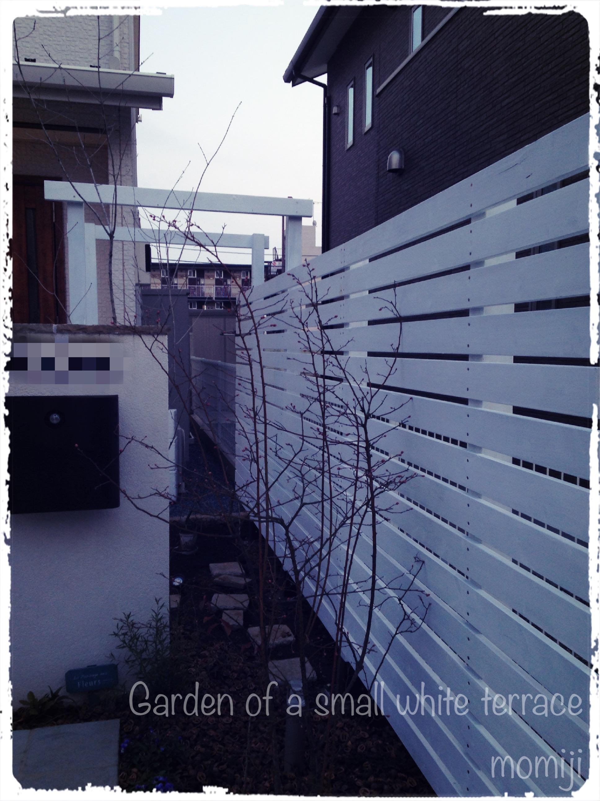 フェンス&パーゴラ