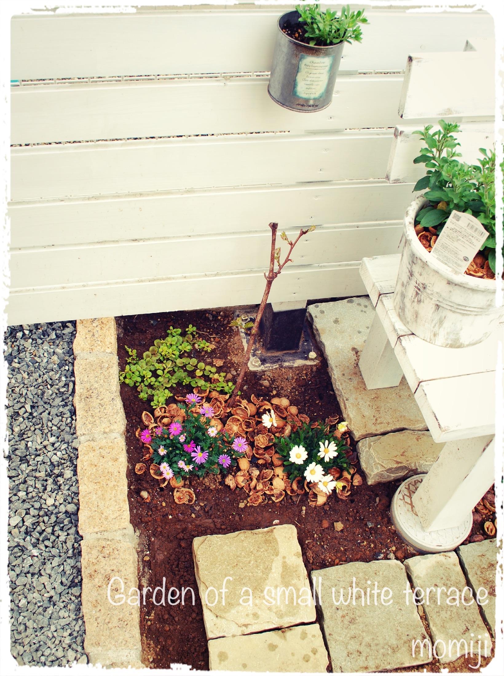 ダイソーの木製ガーデンフェンス