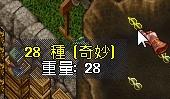 WS002665_20150403211252833.jpg