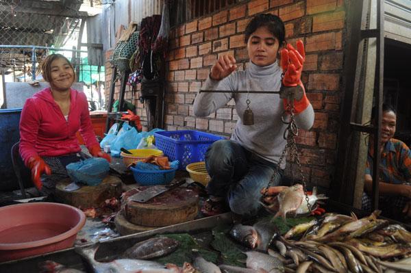 カンボジア 市場の魚屋