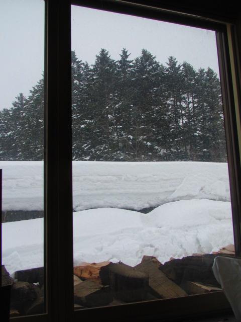 3月雪 003