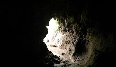 コウモリの棲む洞窟