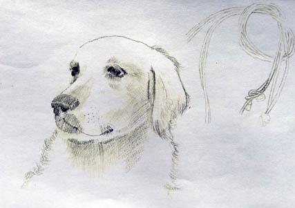 マロン肖像描