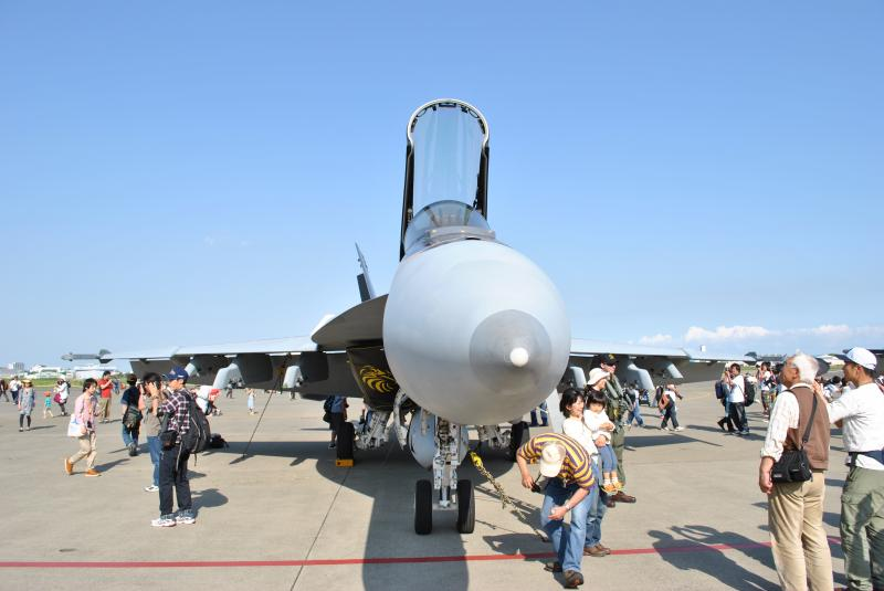 VFA-115a