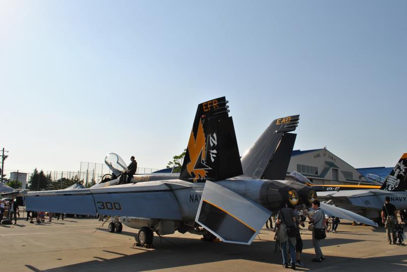 VFA-115e