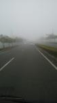 霧が濃いんじゃ20150317