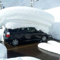 車の屋根に積もった雪