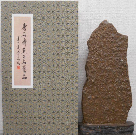三葉虫 化石 大