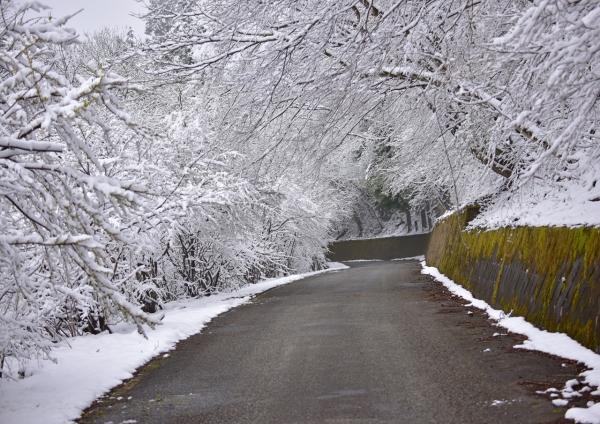 雪景色 峠-004
