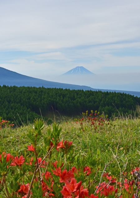 富士山 車山-002