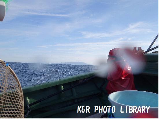 12月21日富戸ボート3
