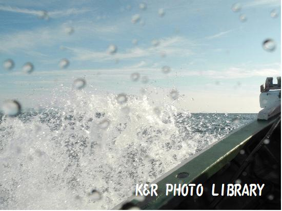 12月21日富戸ボート5