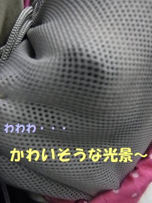 150112-3.jpg